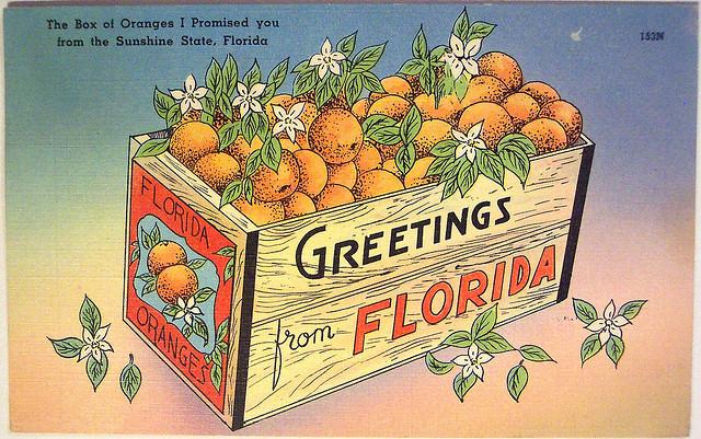augustine florida postcards st vintage